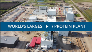 IAA is proud to participate in the success of the largest pea protein plant in Portage la Prairie.