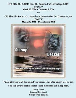 Stormy & Decker Ad