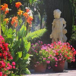 Tropical Garden Hollywood Movie Set.