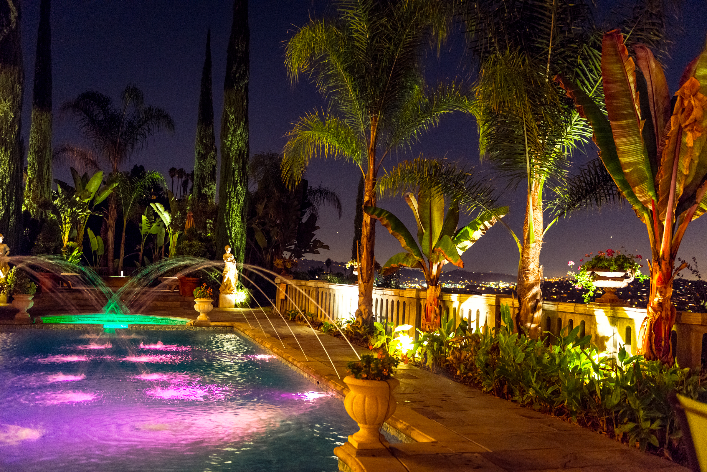 Nighttime garden in Los Angeles