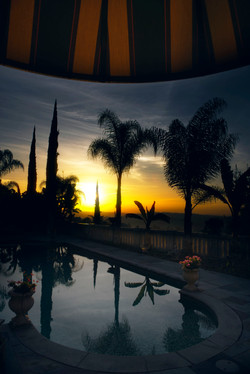 Tropical Sunrise in Los Angeles