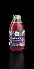 Marry_web_v1_1.png