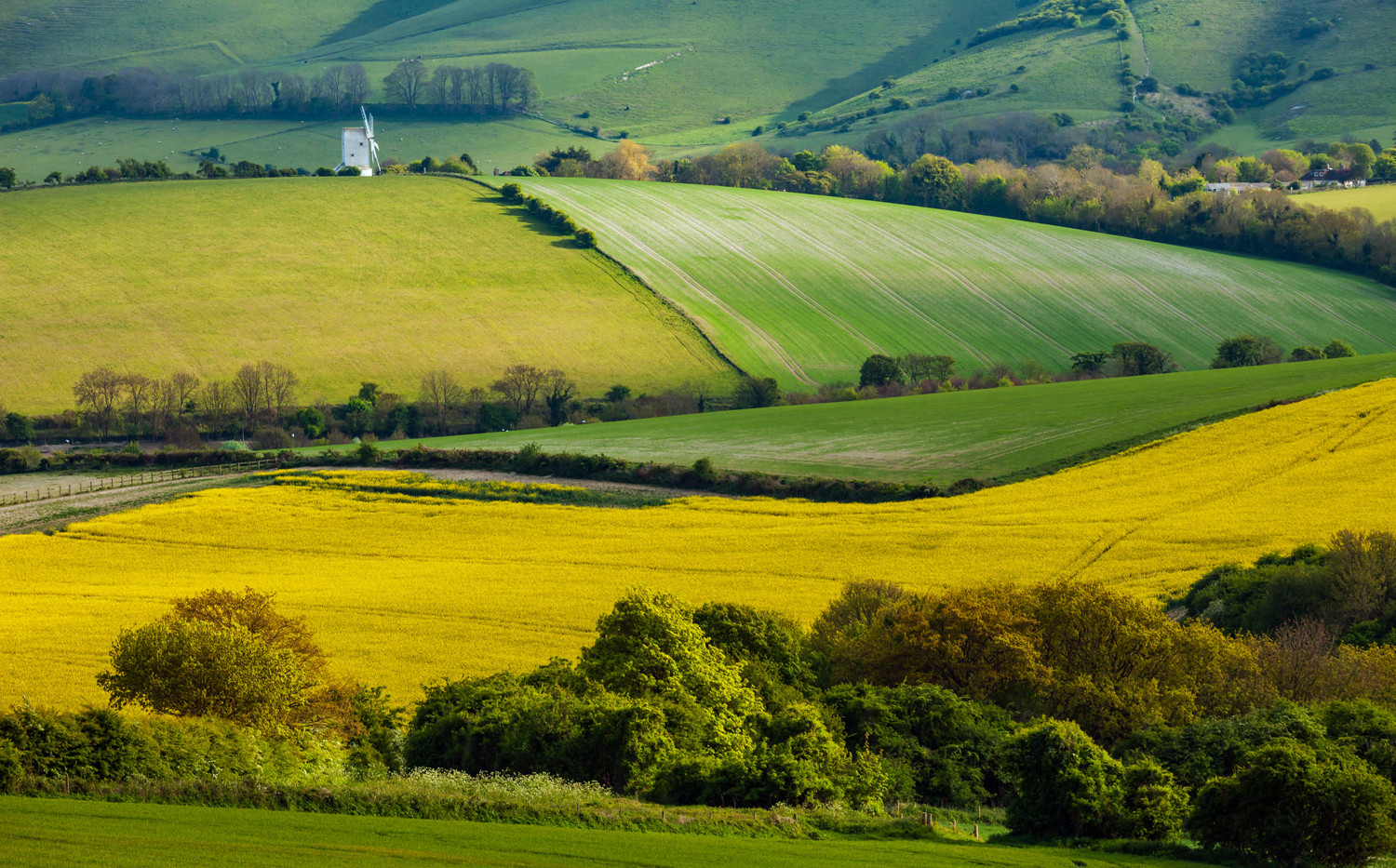 South Downs near Lewes, East Sussex, 27th April 2017