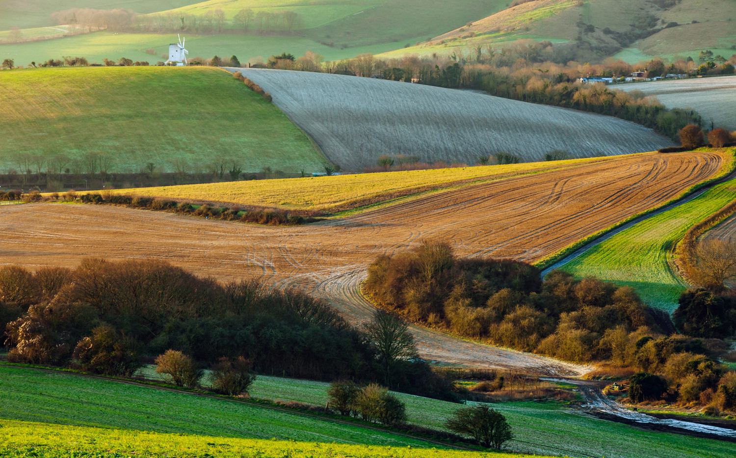 South Downs near Lewes, East Sussex, 19th January 2020