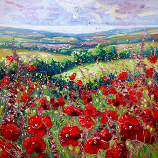 Summer-poppies-in-a-Sussex-meadow