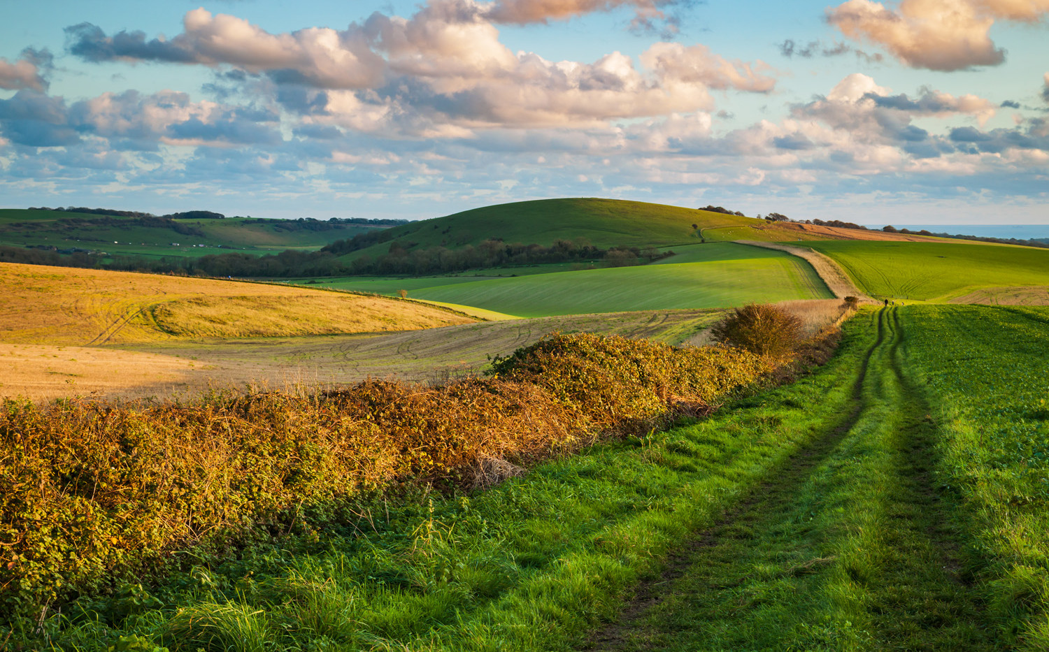 South Downs near Storrington, West Sussex, 6th November 2017