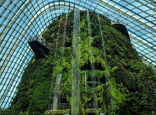 シンガポール・gardens by the bay(クラウドフォレスト & フラ