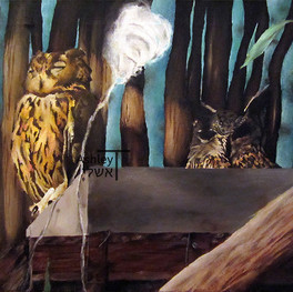 Owls and Cotton