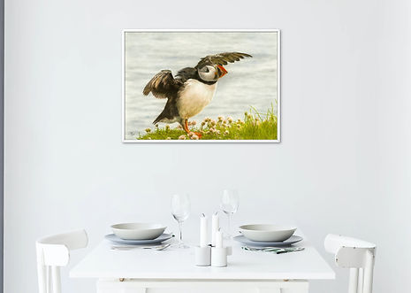 Puffin Taking Flight Print Only.jpg