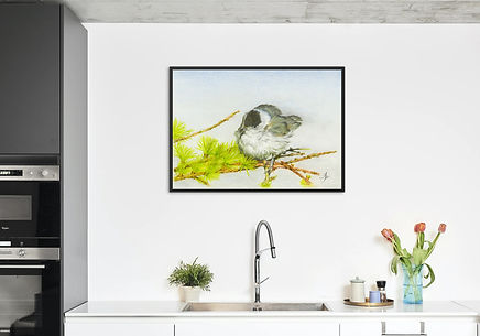 Blackcap print only frame.jpg