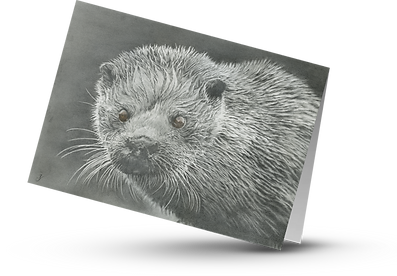 Otter transparent card.png