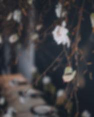 Zita-Elze-Flower-Academy-Taehee-Kim-3627