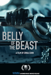 belly of the beasts cover photo.png