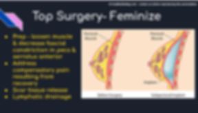 top surgery breast augmentation.png