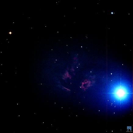Alnitak photobombing pic of Flame Nebula