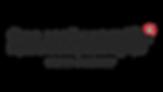 RALLYRAIDERS_LOGO_GREY.png