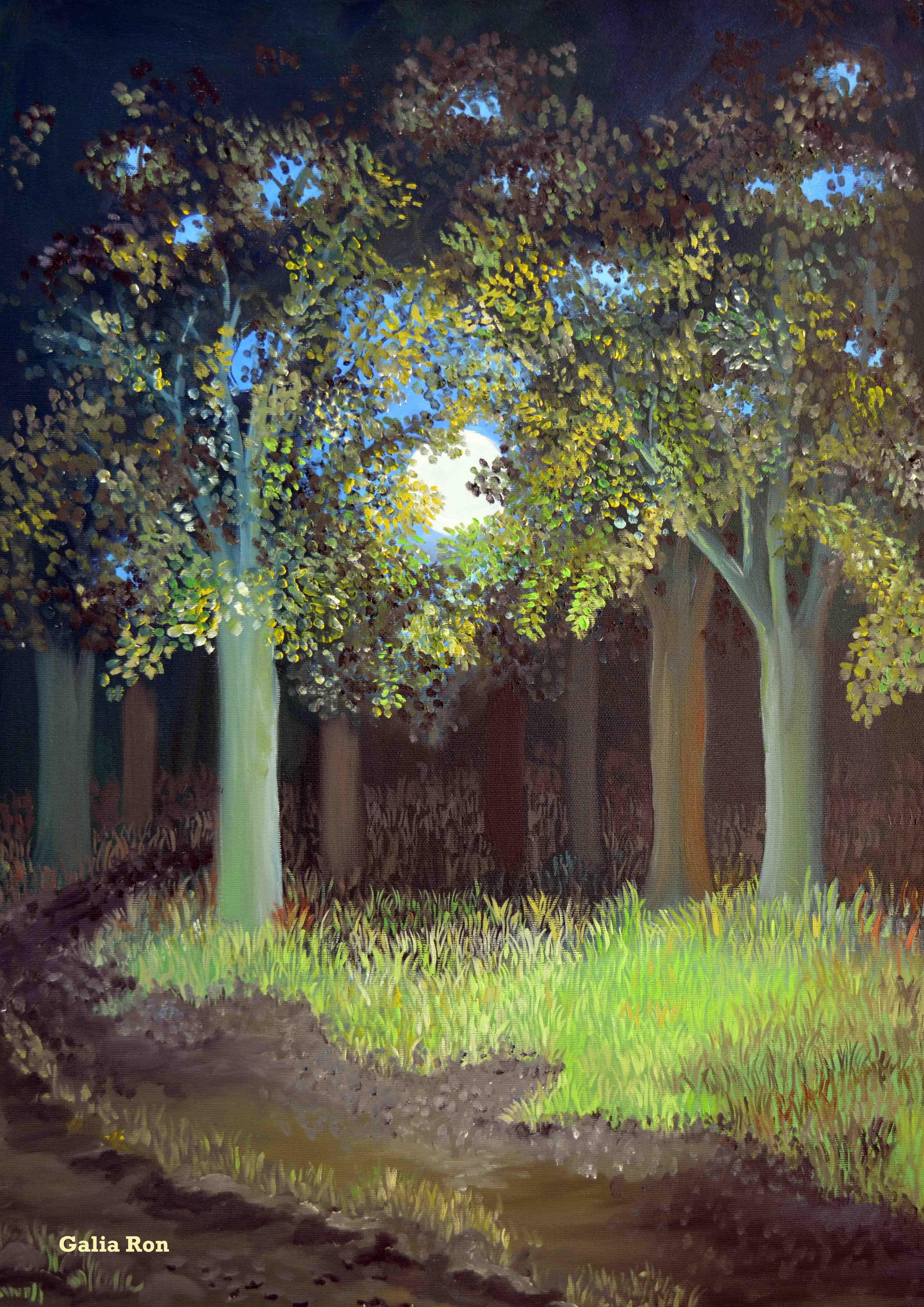 יער לאור הירח-גליה רון