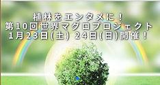 IMG_3651.JPG.jpg