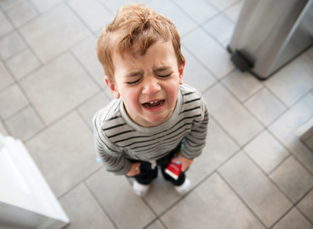 Managing your child's BIG EMOTIONS – Tips on how to control those fiery moments