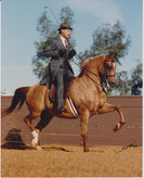 Mitch Sperte and Bask Sunset 1986
