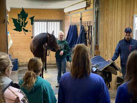 4-H Learning Day