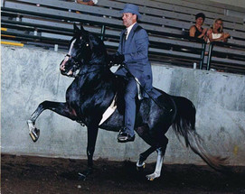 Mitch Sperte and Apaladin 1998
