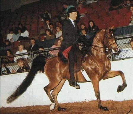Mitch Sperte and Maura Pask 1990
