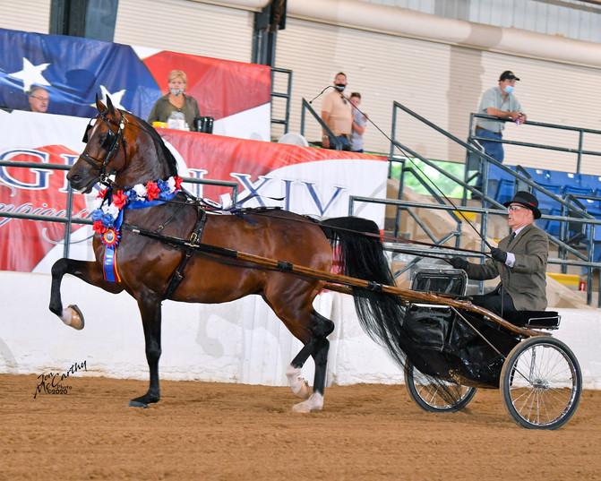 Royal Nobility and Mitch | 2020 Region XIV Championships