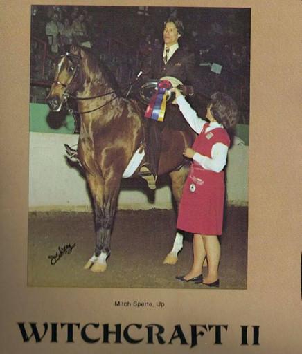 Mitch Sperte Witchcraft II 1979