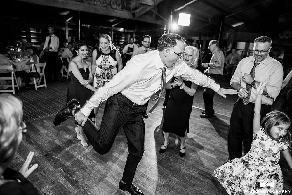 Fun Party Wedding Dancing DJ