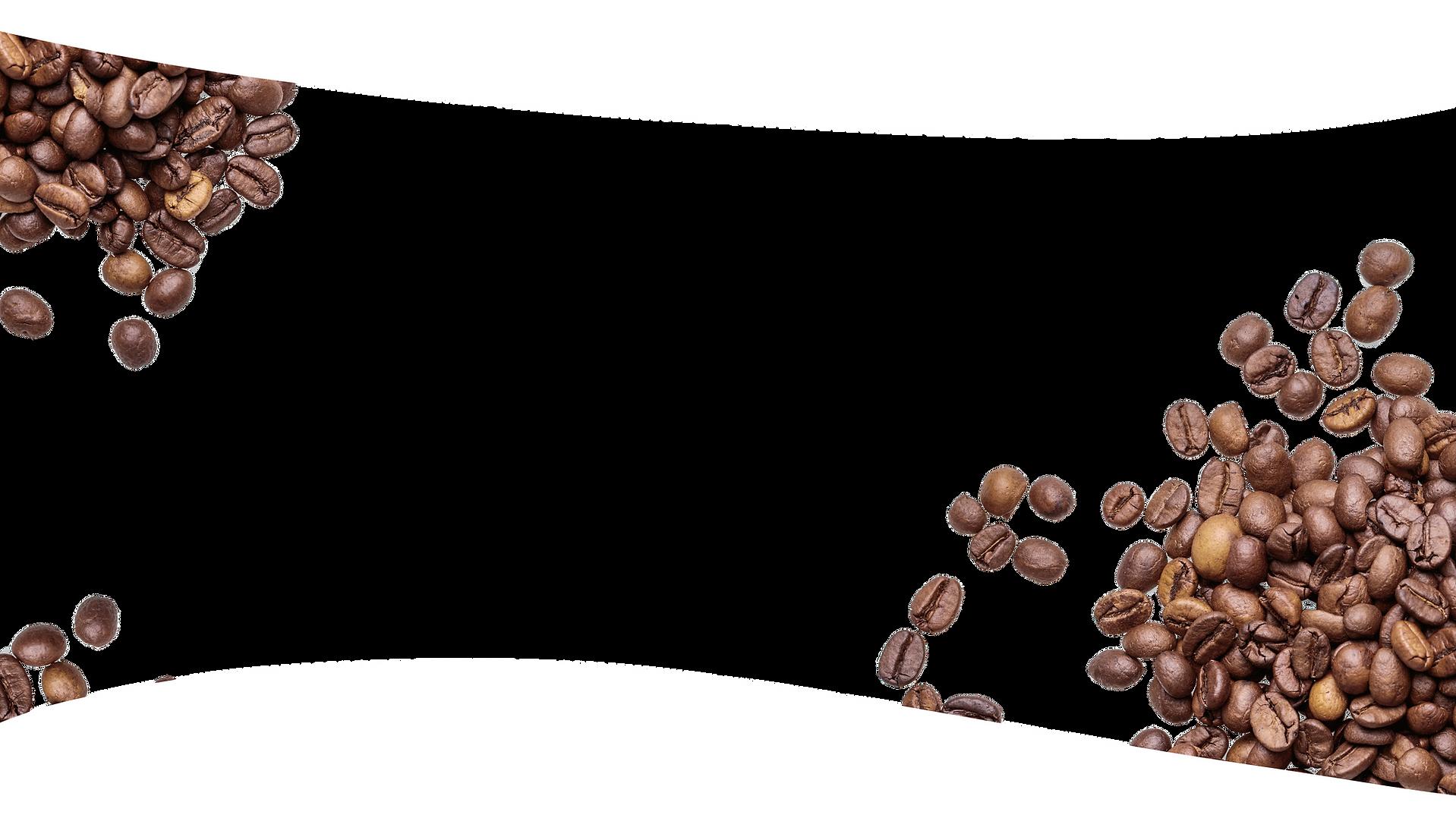 final beans!.png
