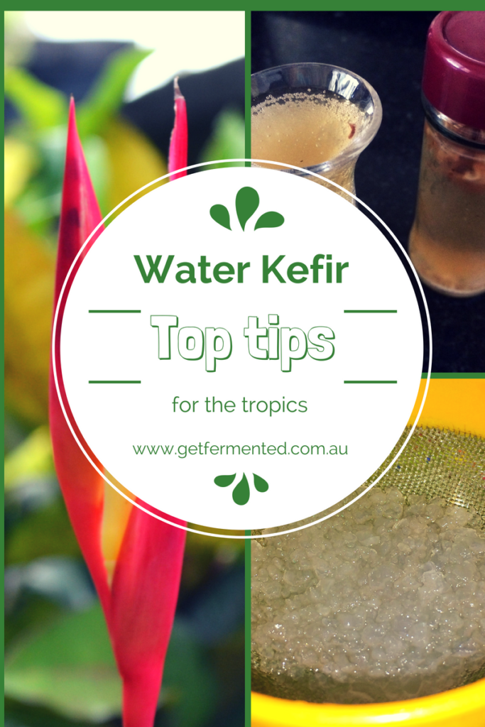 Fermented Water Kefir Top Tips