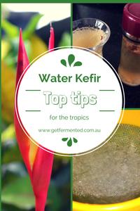 Fermented Water Kefir Top Tips
