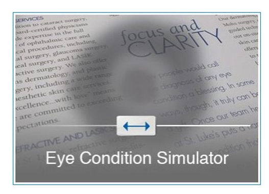 eye condition simulator.jpg