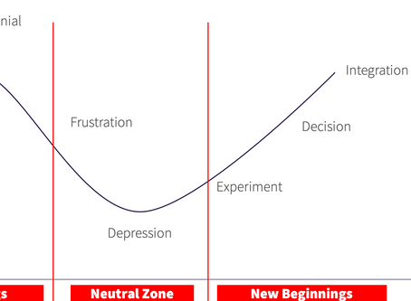 The Emotional Process of Change