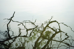 #06_Beyond-the-Boundary_by-Nakyum-Hong