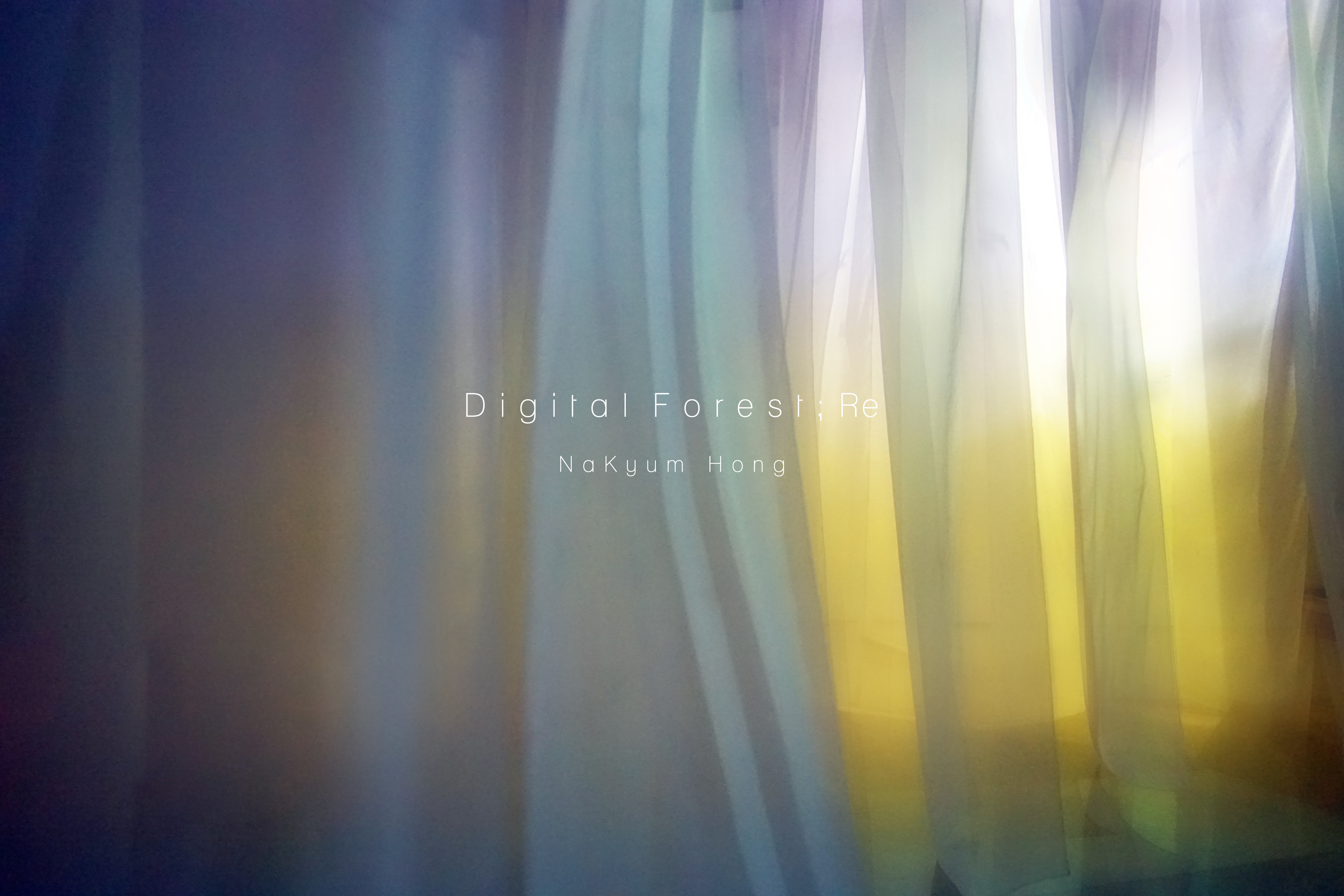 Digital-forest-Re  ⓒ홍나겸-2017