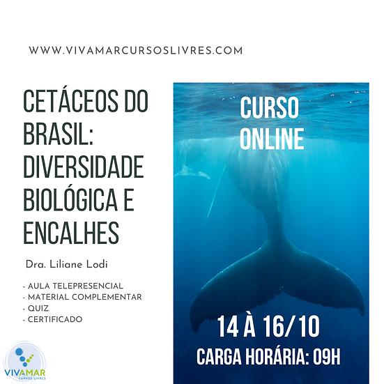 Cetáceos do Brasil: diversidade biológica e encalhes