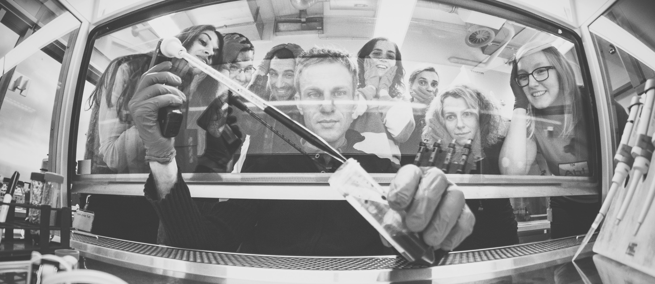 Mansfeld Lab 2014