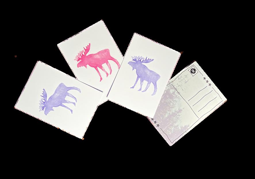 Hp_Shop 3_Karten-ALL.png