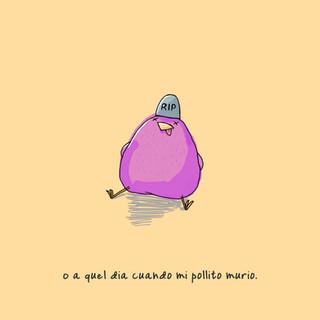 Pollito.jpg