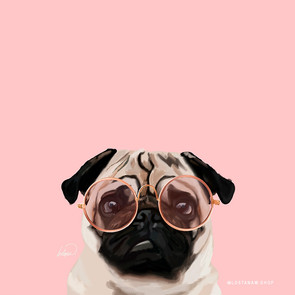 Intellectual Pug