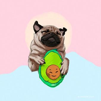 Pug Avocado