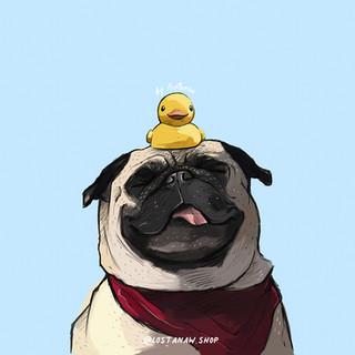 Pug Shower