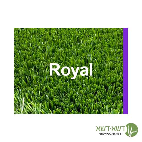 דשא סינטטי - רויאל Royal