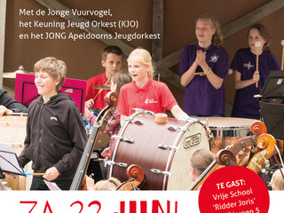 22 juni Orkestendag Zwolle!
