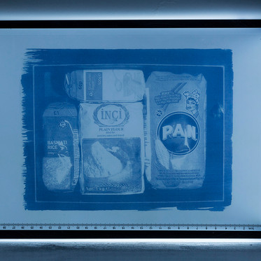 Lightboxes and Cyanotypes