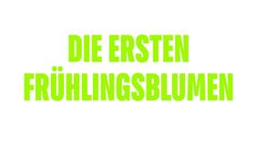 19-6_AllerGutenDinge_Carousel_0000s_0002