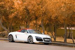 2015 Audi R8 Convertible Dubai