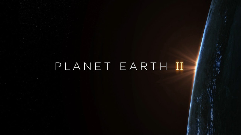 """From the frozen tundra in the north to the dry forests of the equator, Sir David Attenborough narrates a compelling view of the planet. """"Planet Earth"""" was the first natural history documentary to be filmed in high definition, and now a decade later improved technology has made it possible to capture further details, from elusive animal behaviors to previously inaccessible remote landscapes."""